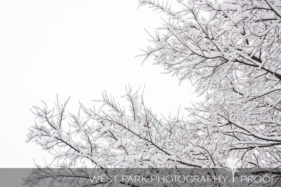 April Thaw by Peder Mork Monsted Spring Snow Melt River Creek 8x10 Print 2468
