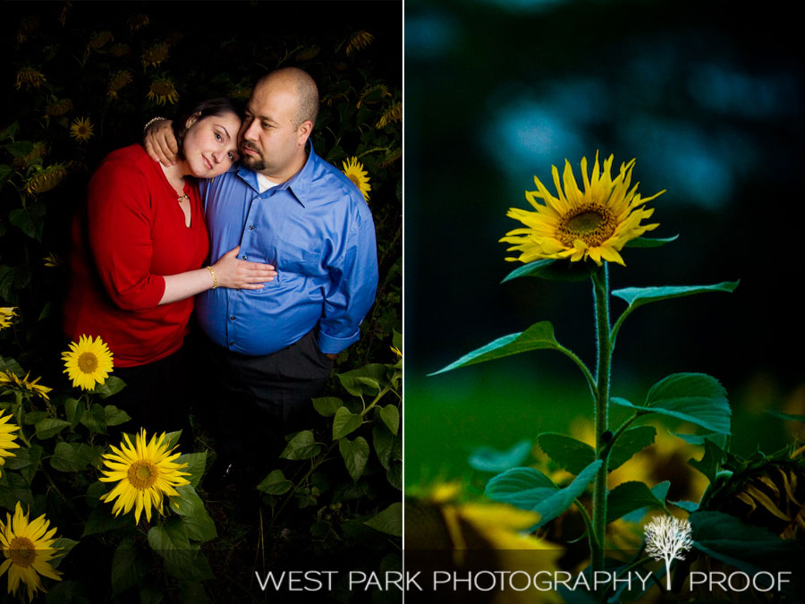 e9 Engagement Session   Jean & Elie