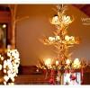 River Birch Lodge Wedding Tips - Hartland, MI