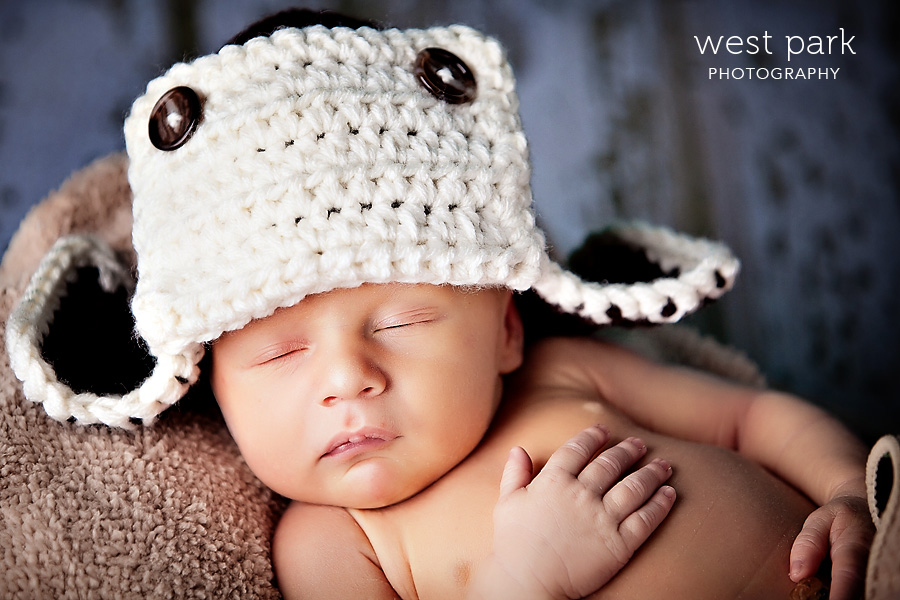 detroit newborn photographer 02 Baby Griffin | Detroit Newborn Photographer