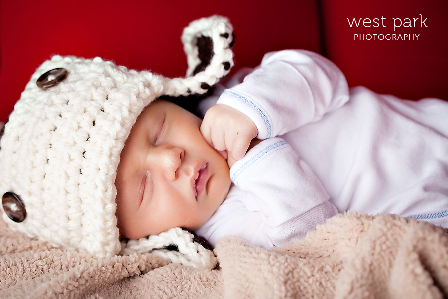 detroit newborn photographer 05 Baby Griffin | Detroit Newborn Photographer