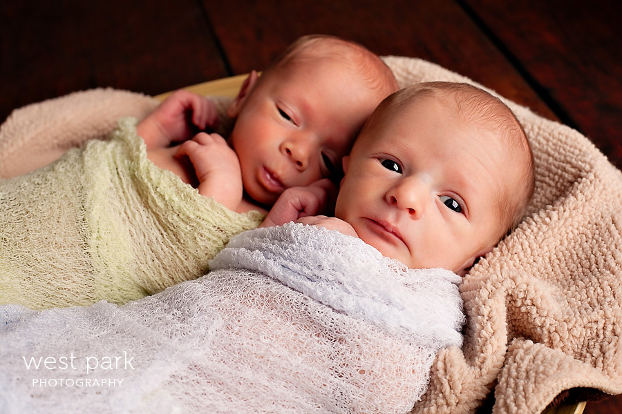 detroit newborn photographer 04 The Smith Twins   Newborn Photography