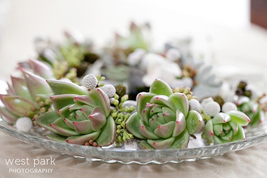 Wedding Trend: Succulents