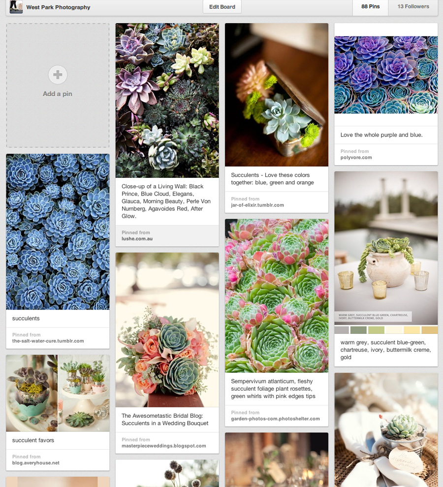 succulents on pinterest Wedding Trend: Succulents